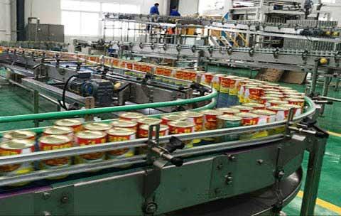 قیمت خط تولید کنسرو حبوبات