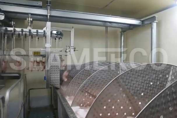 خط تولید کنسرو مرغ سیمرکو