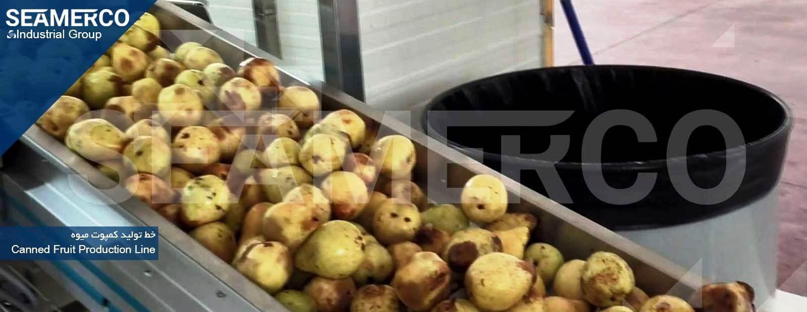 خط تولید کمپوت میوه