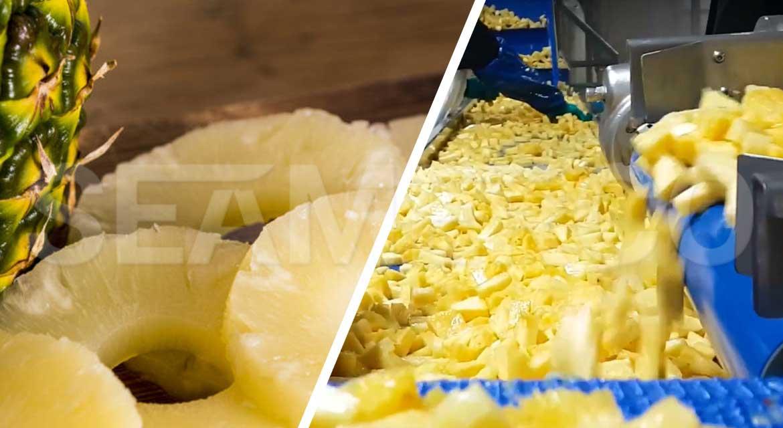 خط تولید کمپوت آناناس