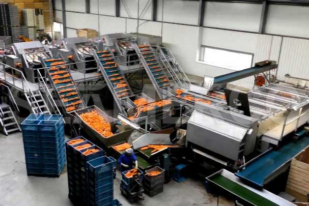 خط تولید مربای هویج سیمرکو
