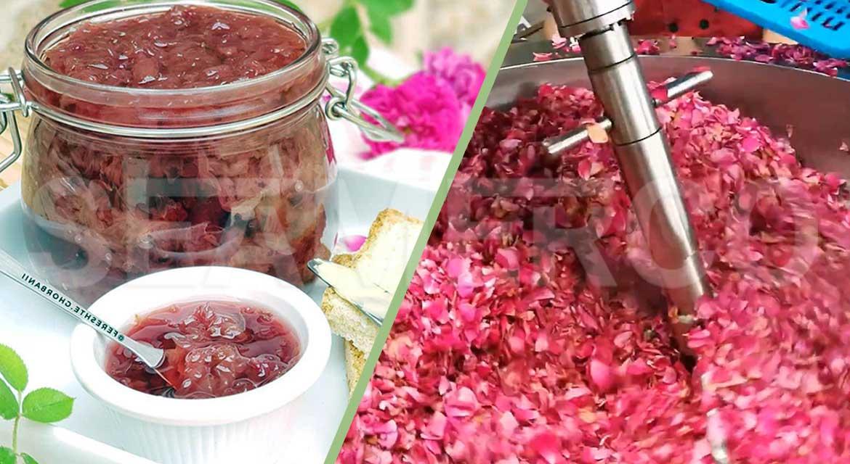 خط تولید مربای گلمحمدی