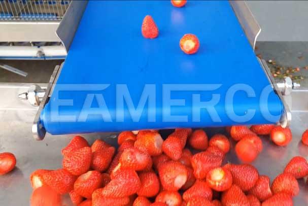 خط تولید مربای توت فرنگی سیمرکو