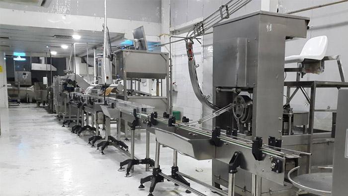 خط تولید کنسرو تن ماهی- ترکیه