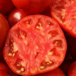 گوجه ربی