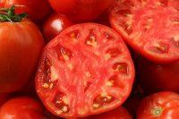 گوجه ربی چیست