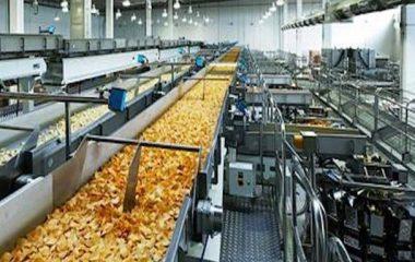 عملیات پردازشی اصلی روی مواد غذایی